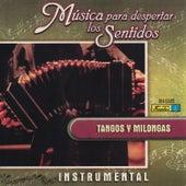 Música para Despertar los Sentidos - Tangos y Milongas by Various Artists