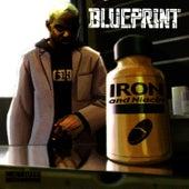 Iron & Niacin von Blueprint