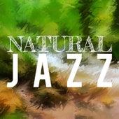 Natural Jazz de Various Artists