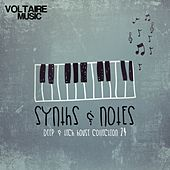 Synths and Notes 24 by Various Artists