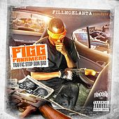 Traffic Stop Gone Bad von Figg Panamera