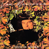 A Sense of Wonder by Van Morrison
