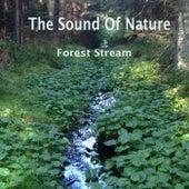 Forest Stream di The Sound of Nature