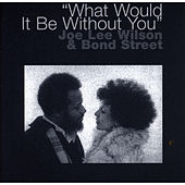 What Would It Be Without You by Joe Lee Wilson