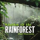 Rhythm of the Rainforest by Phil Thornton