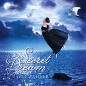 Secret Dream by David Wahler
