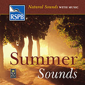 Summer Sounds by Natural Sounds