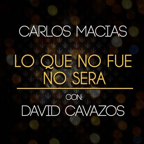 Lo Que No Fue No Será by David Cavazos