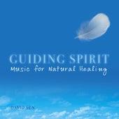 Guiding Spirit by David Sun