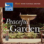 Music with Natural Sounds: Peaceful Garden de Medwyn Goodall