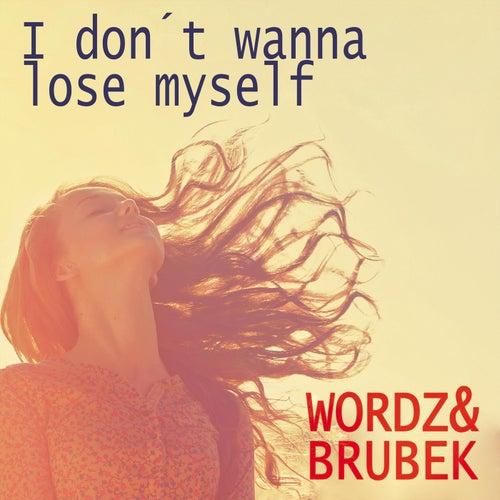 I don´t wanna lose myself by Wordz