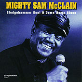 Sledgehammer Soul & Down Home Blues by Mighty Sam McClain