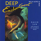 Deep Enchantment by David Sun