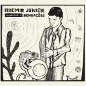 Camaleão Ii - Sensações von Ademir Junior