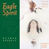 Eagle Spirit by Medwyn Goodall