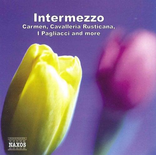 Intermezzo de Various Artists