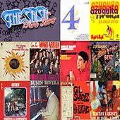 The Salsa Dura Show, Vol. 4 by Various Artists