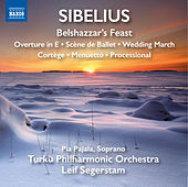 Sibelius: Belshazzar's Feast & Other Orchestral Pieces von Various Artists