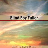 Ain't It a Crying Shame by Blind Boy Fuller