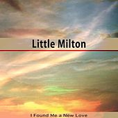 I Found Me a New Love de Little Milton