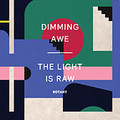 Dimming Awe, The Light Is Raw von Botany