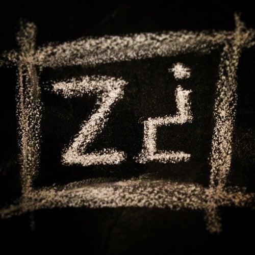 025z¿ by 314Zombie