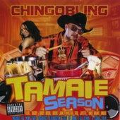 Tamale Season 2 by Chingo Bling