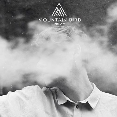 Dream by Mountain Bird