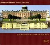 Potsdam Meets Vienna von Various Artists