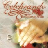 Celebrando la Boda de Mi Hija de Various Artists