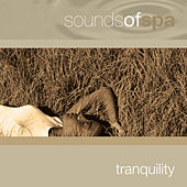 Sounds of Spa: Tranquility de Various Artists