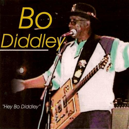 Hey Bo Diddley by Bo Diddley