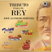 Tributo para el Rey, José Alfredo Jiménez by Various Artists