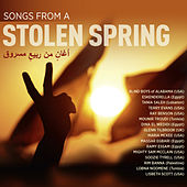 Songs from a stolen spring by Various Artists