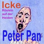 ICKE / Röslein auf der Heiden by Peter Pan