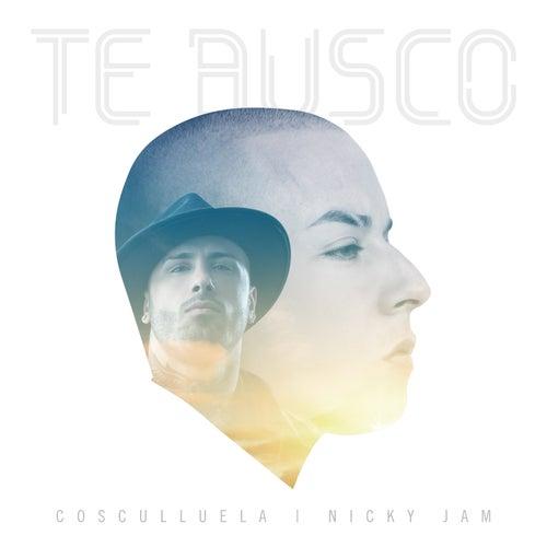 Te Busco by Cosculluela