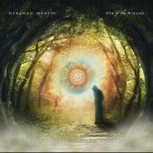 Eye of the Wizard by Deborah Martin