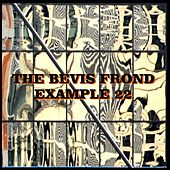 Example 22 by The Bevis Frond