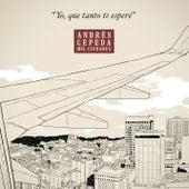 Yo que Tanto Te Esperé de Andrés Cepeda