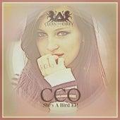 She's A Bird EP von Cco