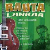 Rautalankaa - Tapio Rautavaaran Hengessä de Various Artists