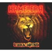 Vibrasound de Kameleba