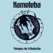 Tiempos de Tribulacion by Kameleba