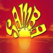 Samba Música Brasileña von Various Artists