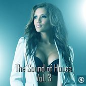 The Sound of House, Vol. 3 - EP by Various Artists