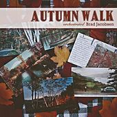 Autumn Walk - Orchestrated (feat. Doug Hammer) by Brad Jacobsen
