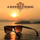 A Summer Evening Vol. 01 by Various Artists