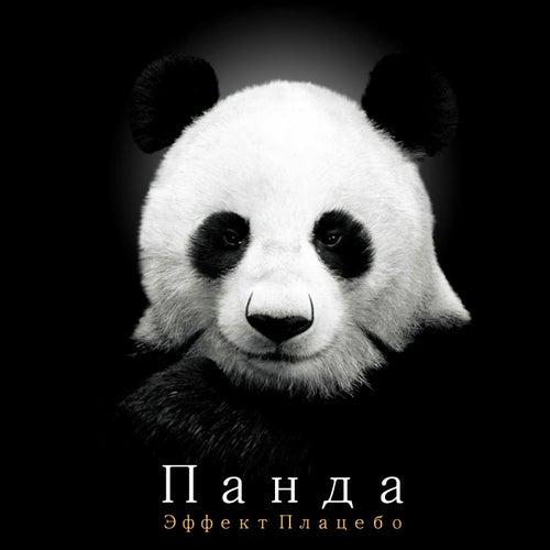 Placebo Effect by Panda