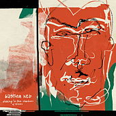 Dinking in the Shadows of Zizou von Bastien Keb