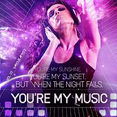 You're My Sunrise, You're My Sunset, but When the Night Falls, You're My Music, Vol. 03 by Various Artists